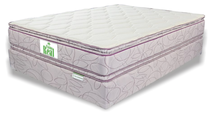 CAMA QUEEN FOAM PALMA REAL